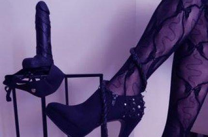 kostenlose webcam chat, sexy erotische
