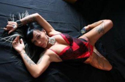 sex live chat, foto erotik